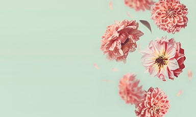 خرید اینترنتی گل برای مراسم ترحیم و جشن